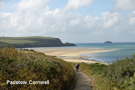 Coastal walk in Padstow, Cornwall